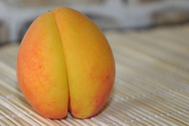 apricot-1561346_1920