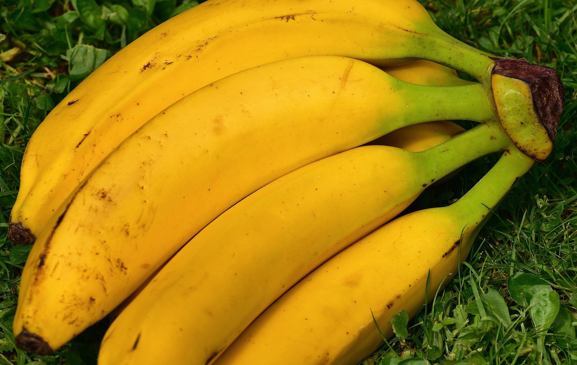 La banane - Association Miam