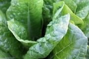 green-vegetables-1149790_1920-3