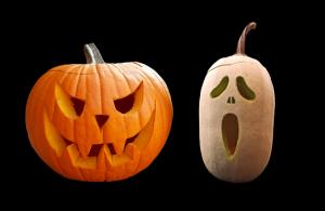 pumpkin-2807777__340