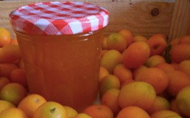 Confiture de kumquat et citron bis