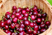 cherries-1453333_1920-1-1