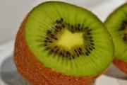 kiwi-1280977_1920-1
