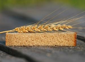 Photo blé et pain